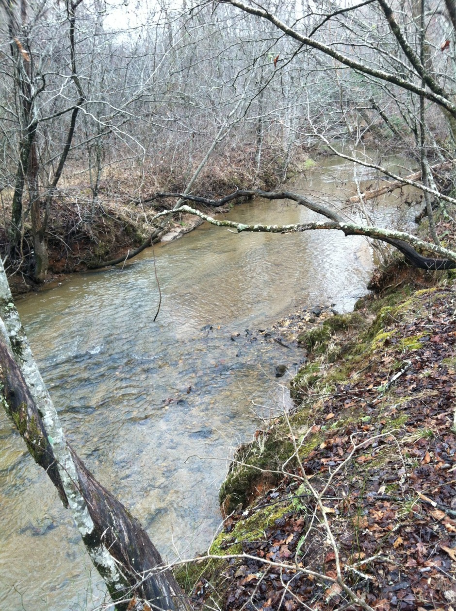 Creek on Our New Land