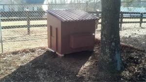 Building the Chicken Coop