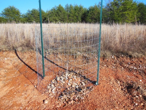 New Cage for Deer Protection