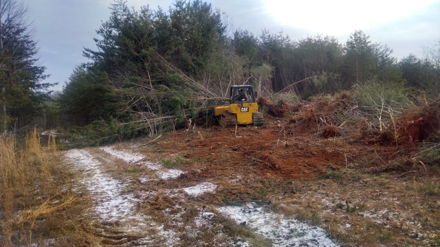 Bulldozing Trees with a D4K Caterpillar