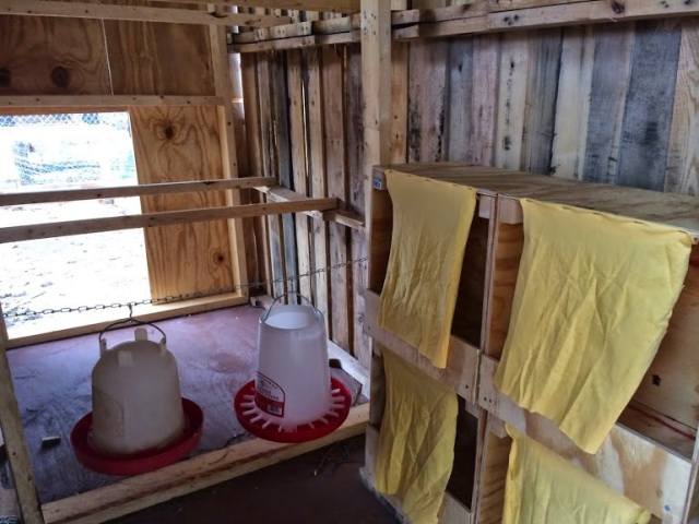 Coop Nesting Boxes, Feeder, and Water