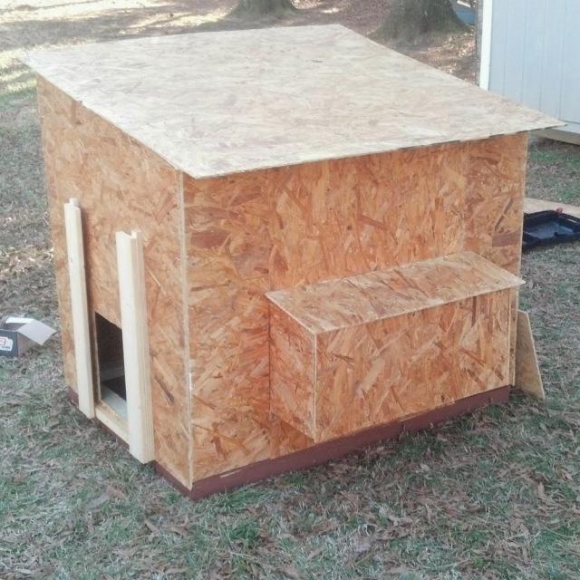 Small Chicken Coop Building