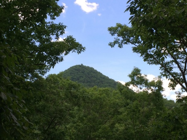 View of Molly's Knob Hungry Mother State Park, Marion VA