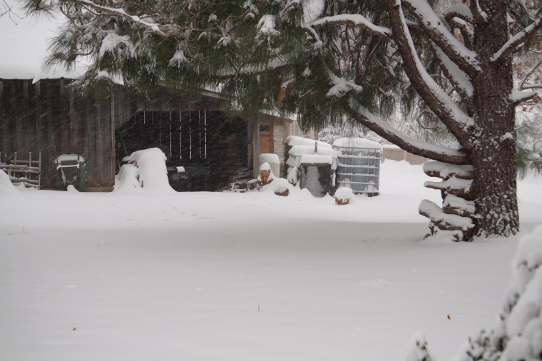 9 Inches for Summers Acres First Snow of 2017